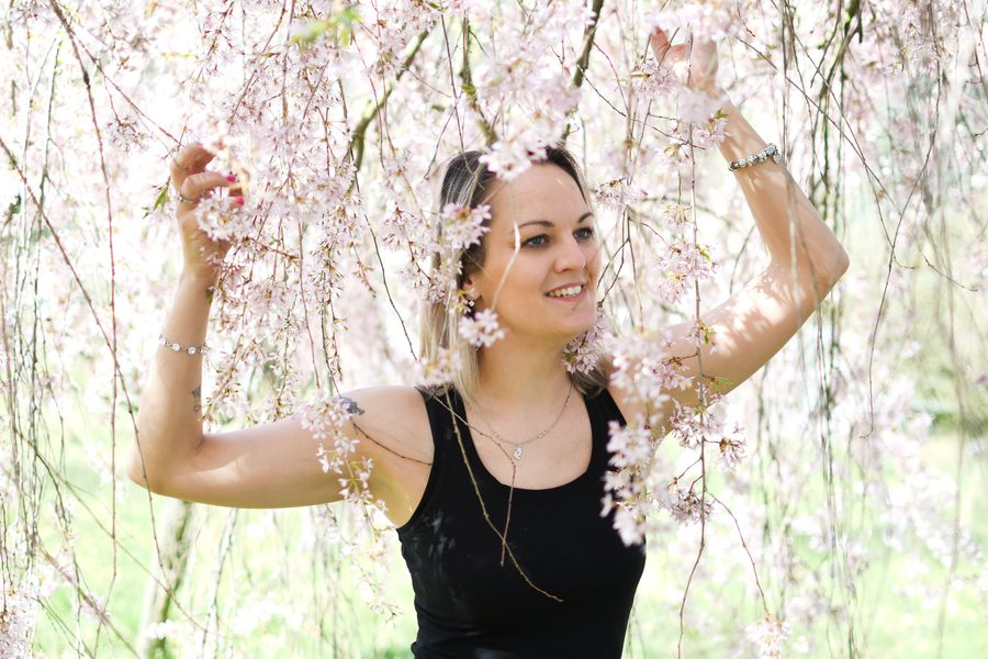 jarní sakura